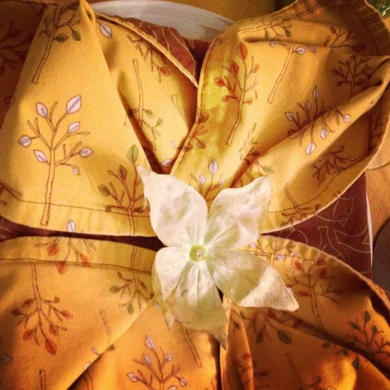 napkin wrinkle lily-of-flower