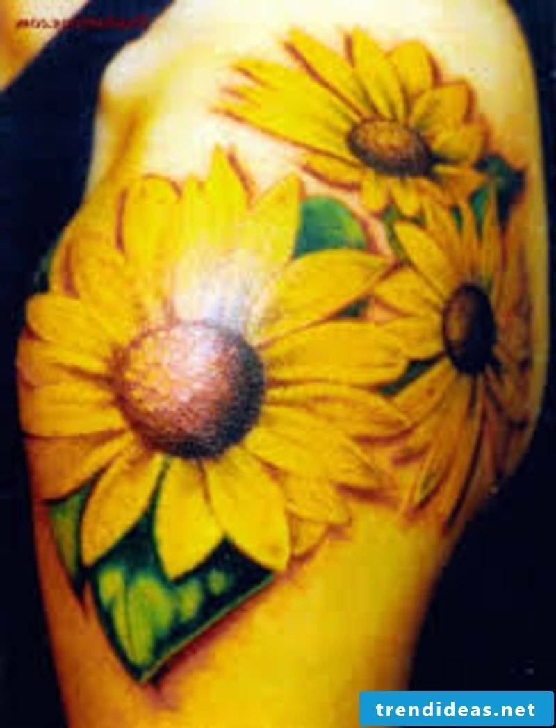 Tattoos flowers and their symbolism Sunflower