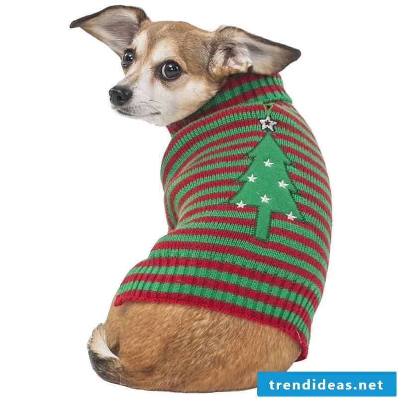 Dog sweaters knit for Christmas