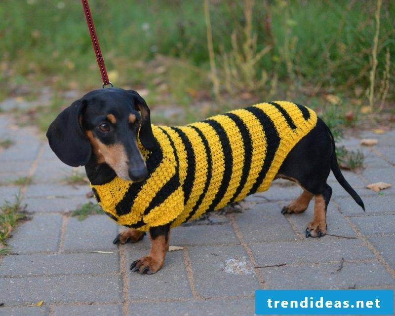 Dog sweaters knit with two types of wool