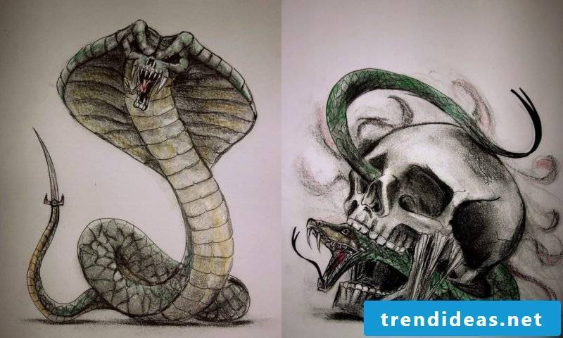 Snakes tattoo with skull