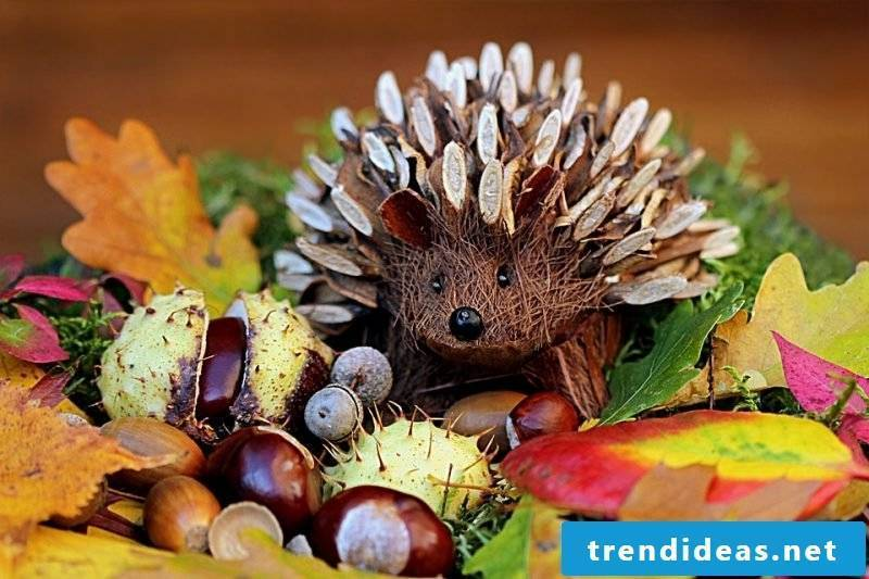 autumn table decoration with chestnuts