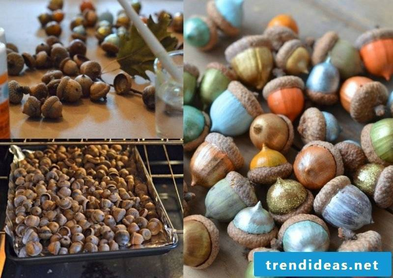 Tinker with children Draw autumn acorns