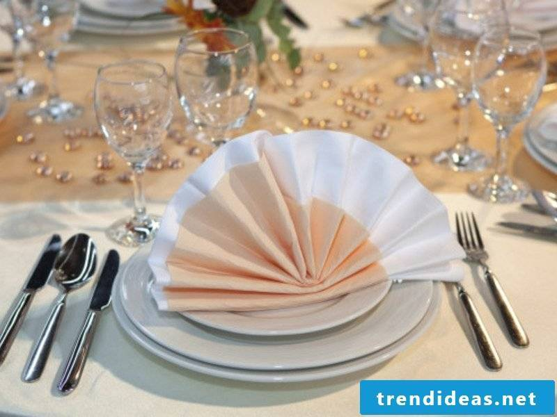 Napkins folding compartments in two colors