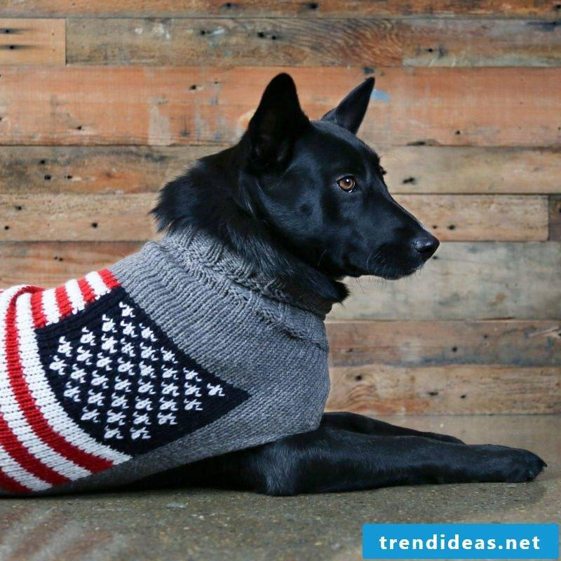 Dog sweaters knit with long neck