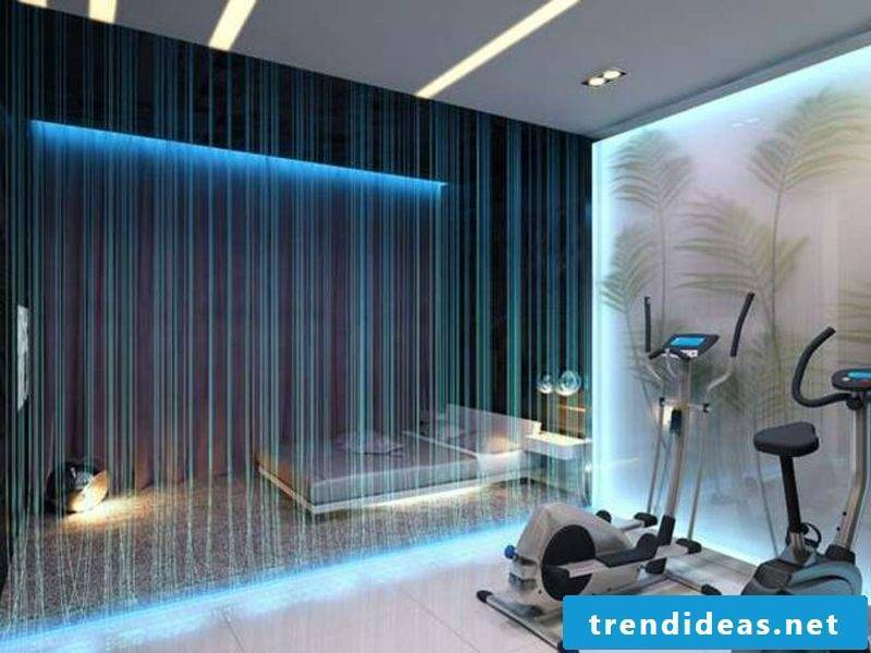 Room divider fiber optic