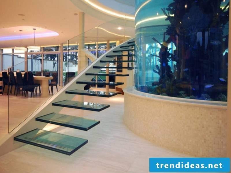 impressive modern glass staircase