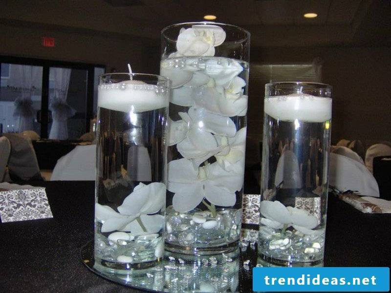 white orchids in the black decorations