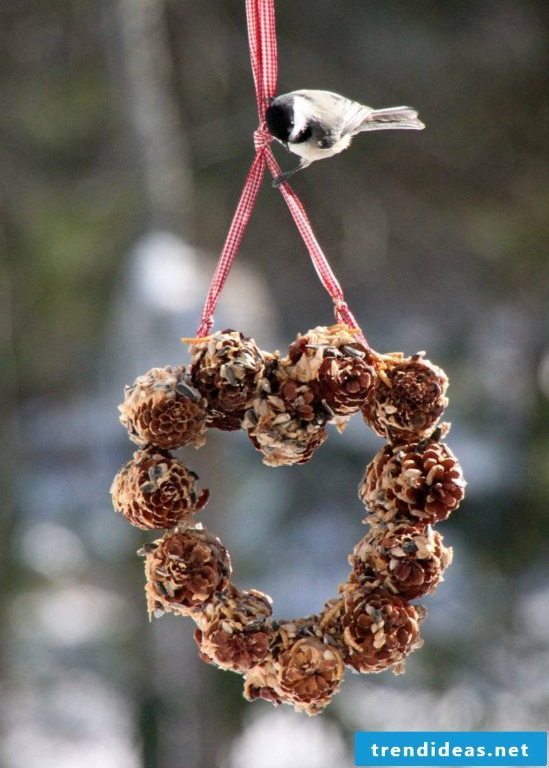 Tinker with pinecone wreath and bird