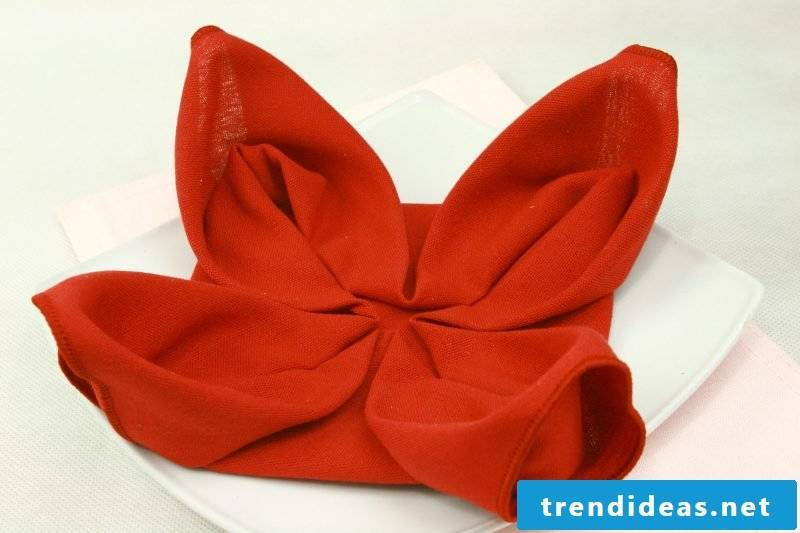 star-wrinkle guide napkin