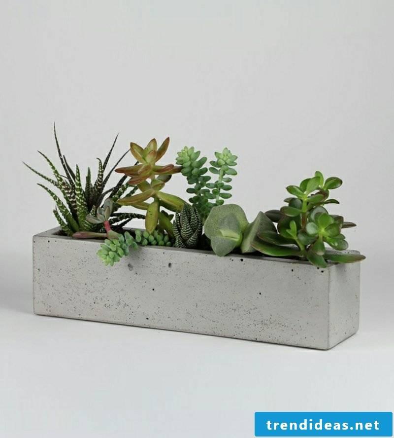 Concrete planter all in gray
