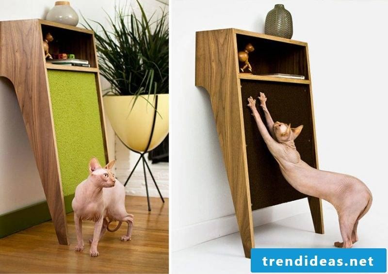 Cat furniture creative