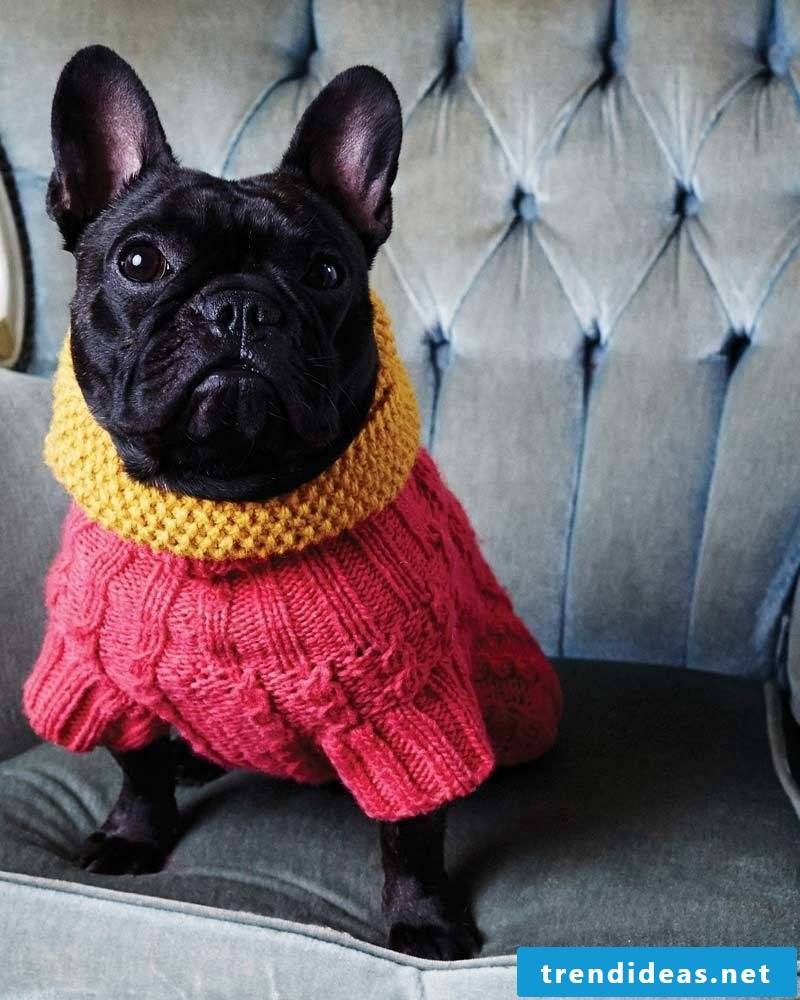 Dog sweaters knit with different patterns for neck and belly