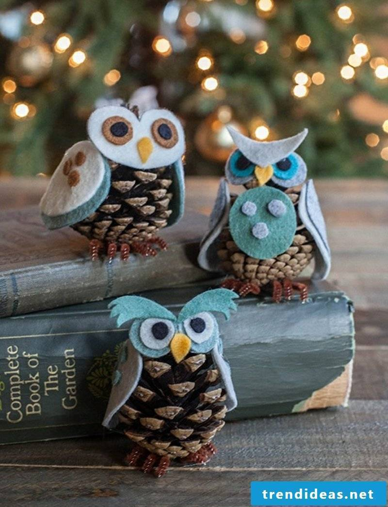 Tinker with pine cones three owls