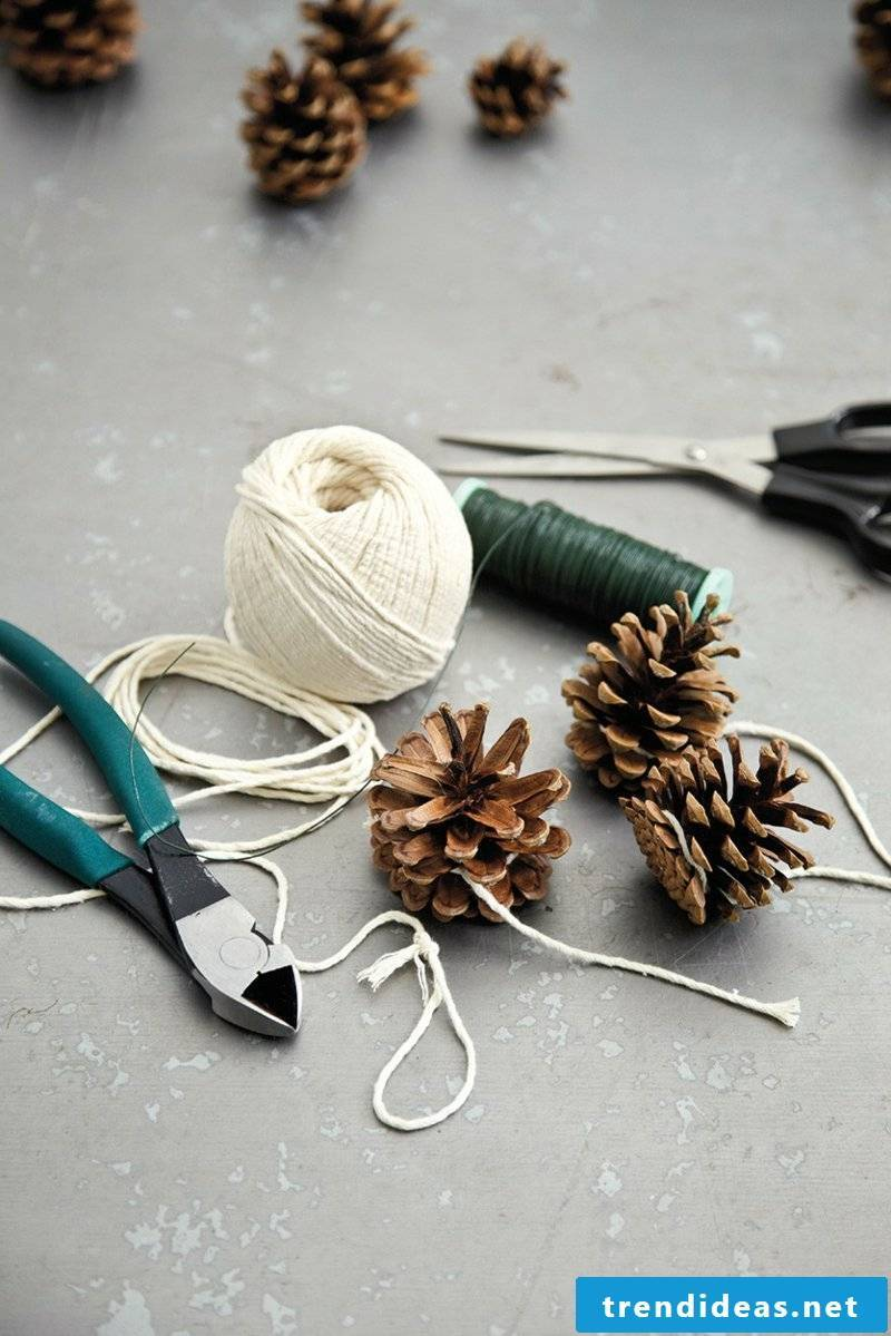 Tinker with pine cone materials