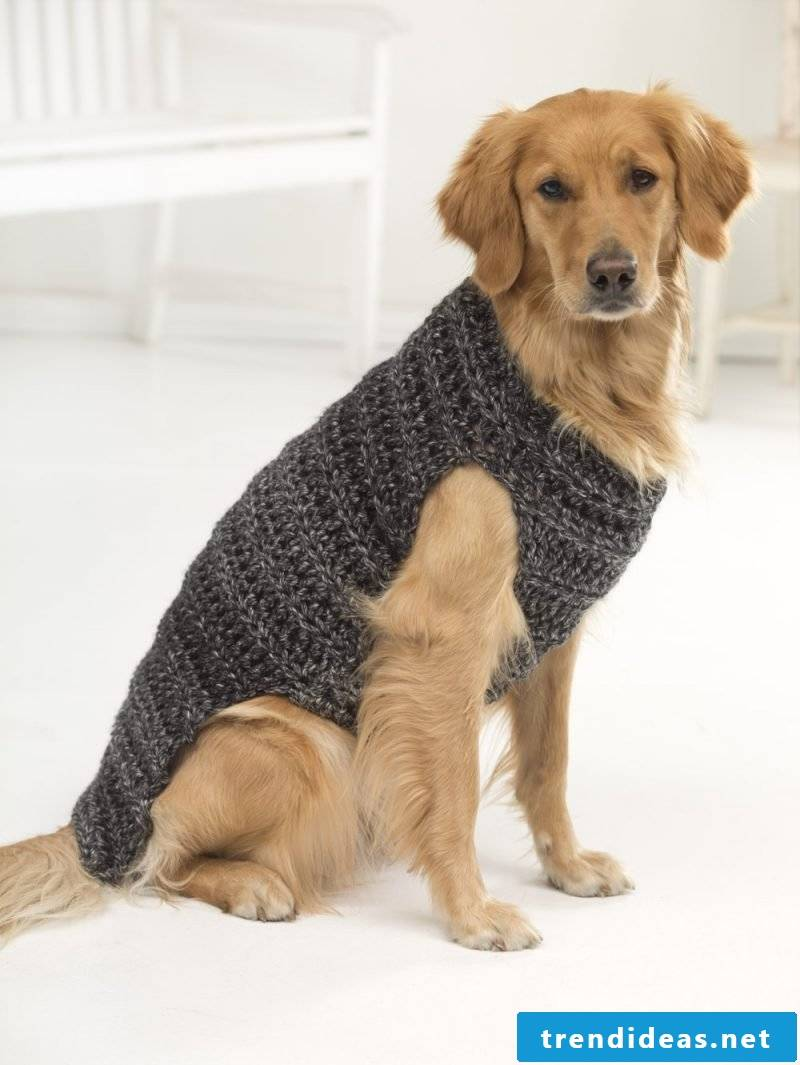 Dog sweaters knit with cable pattern