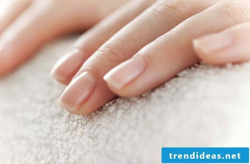beautiful nails paint beautiful fingernails grooming tips tricks nail design nail polish design