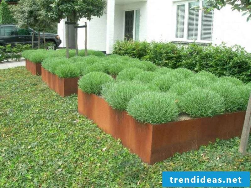 planter cheap