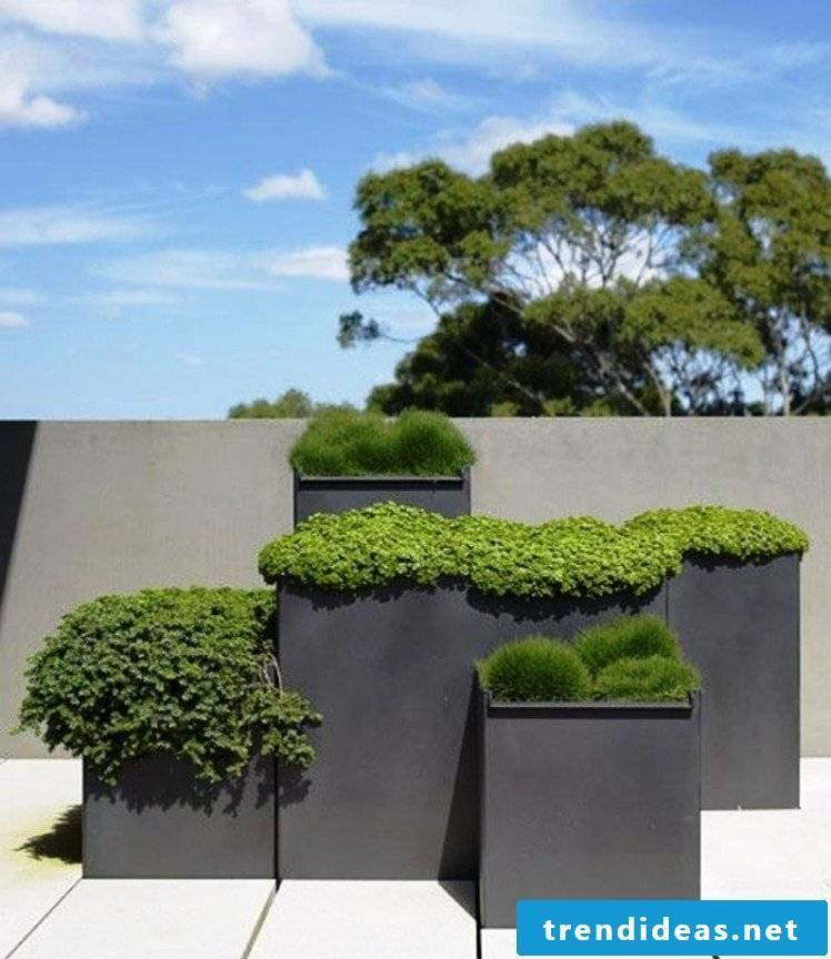 planter gift