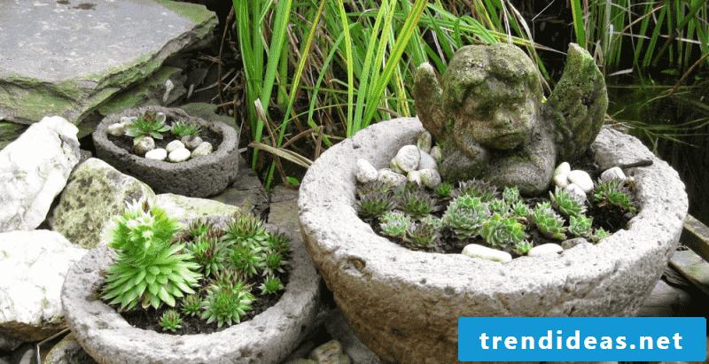 planter garden