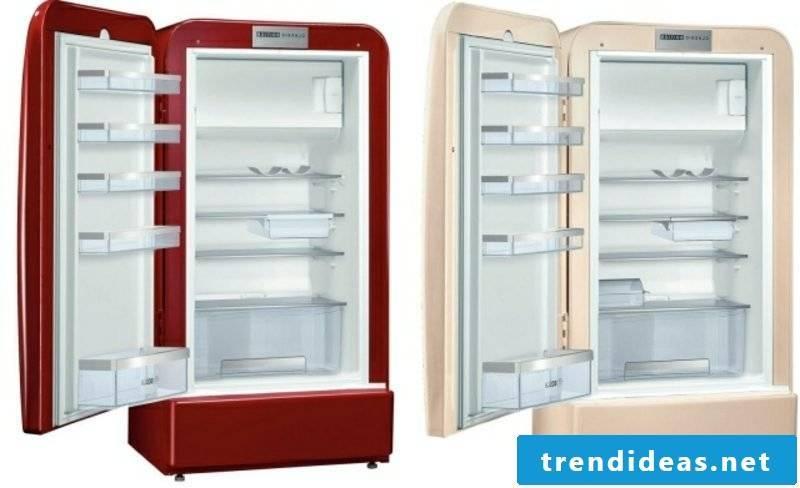 Retro refrigerator Bosch two splendid models interior