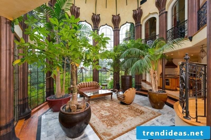 Zimmerpalme interior design