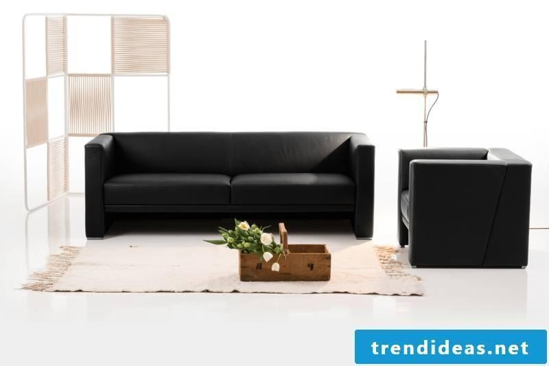 brühl sofas-model-visavis