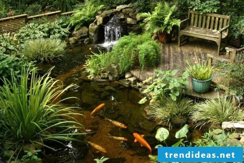 Pond with goldfish and stream