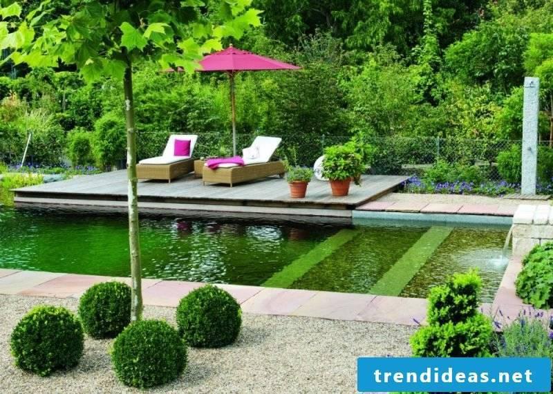 swim pond build yourself cozy