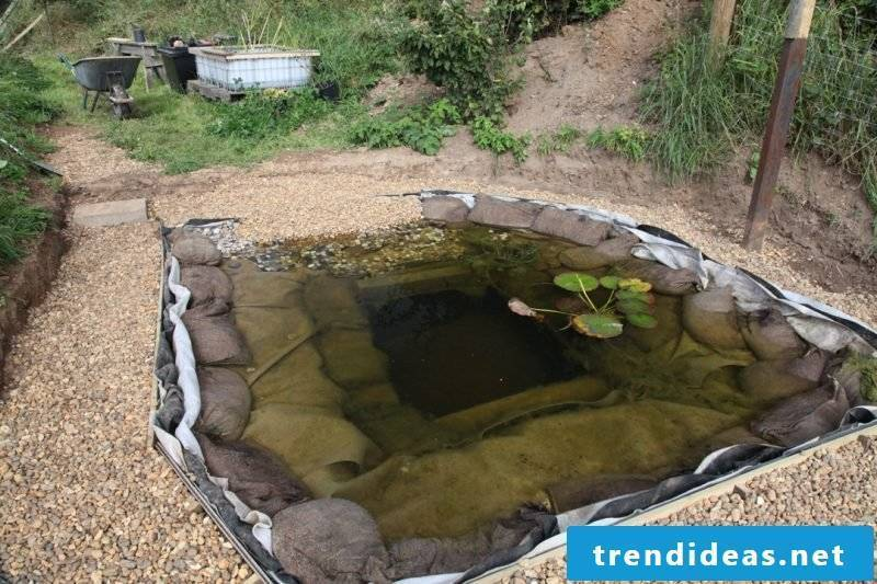 Swimming pond itself build fast