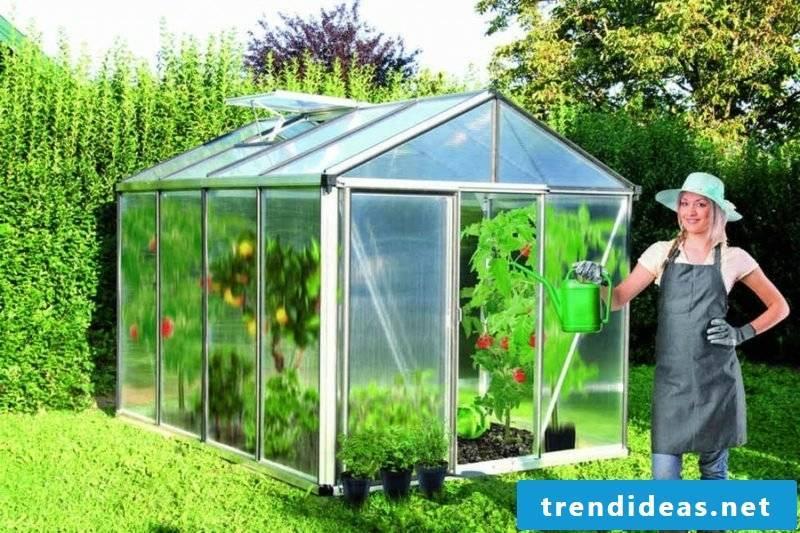 Greenhouse itself build advantages