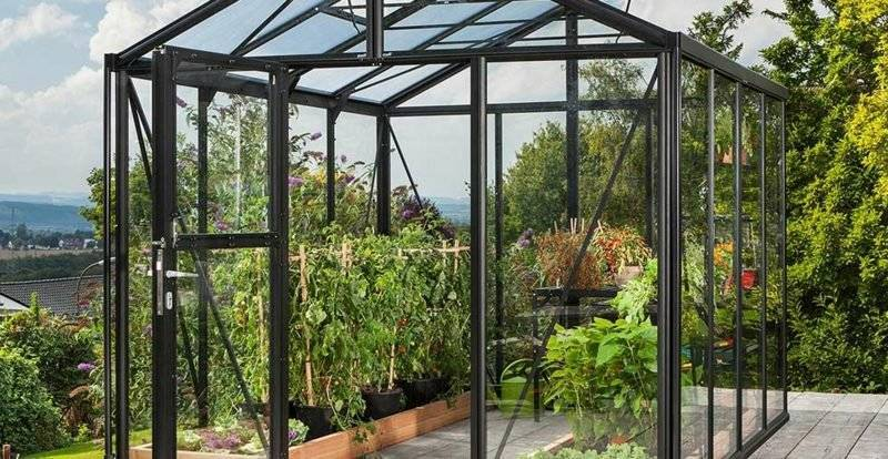 Greenhouse stable steel and glass