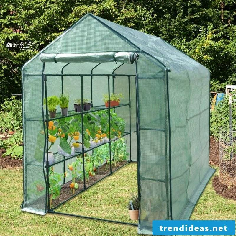 Greenhouse itself builds necessary materials