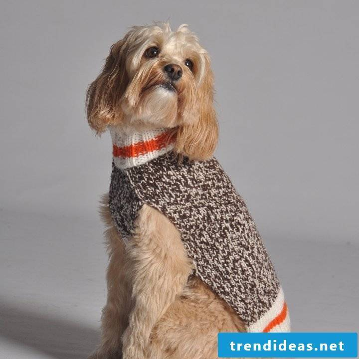 Dog sweaters knit with different patterns