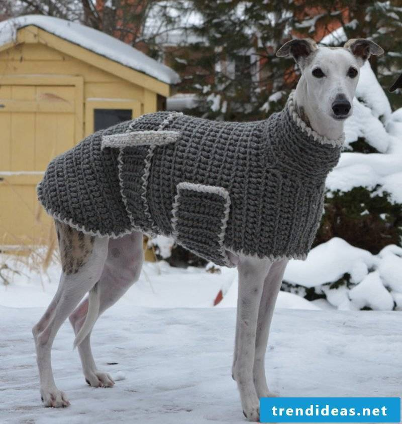 Dog sweaters knit with additional elements
