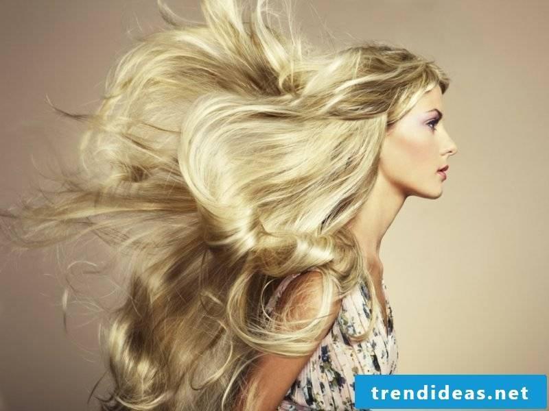 blond hair trendy nuances wheat blond