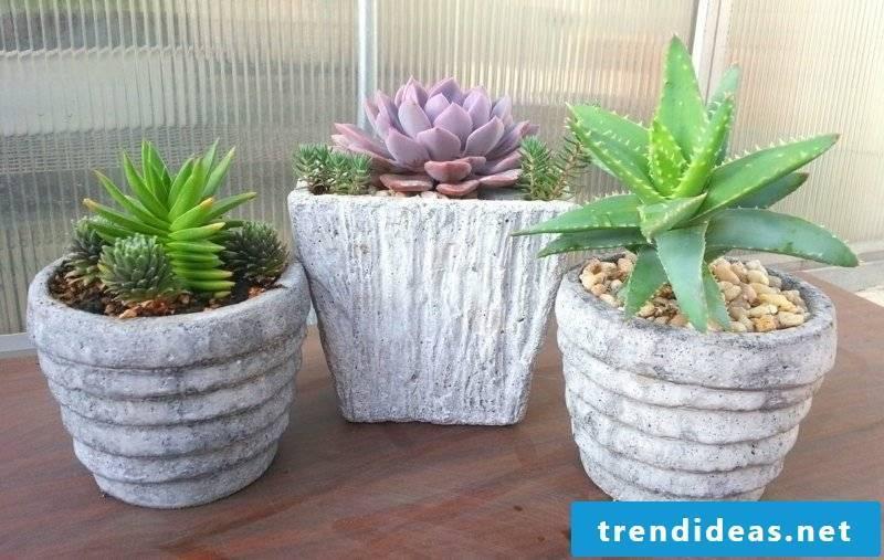 original flower pots made of concrete