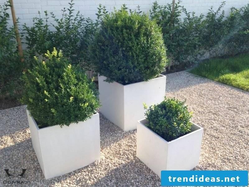 Concrete planter