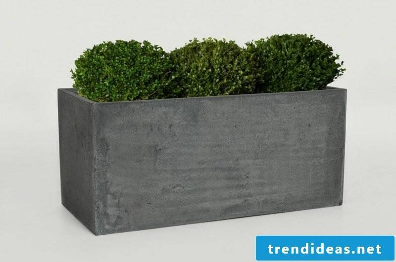 Flower tub concrete ideas and inspirations