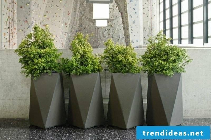 Planter concrete geometric shapes