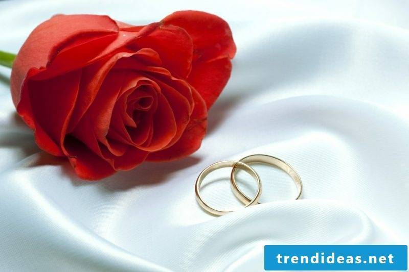 Congratulations to the wedding rose wedding rings