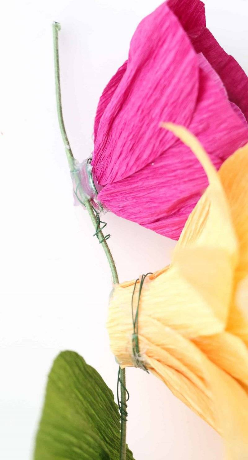 DIY instructions for crepe paper flowers