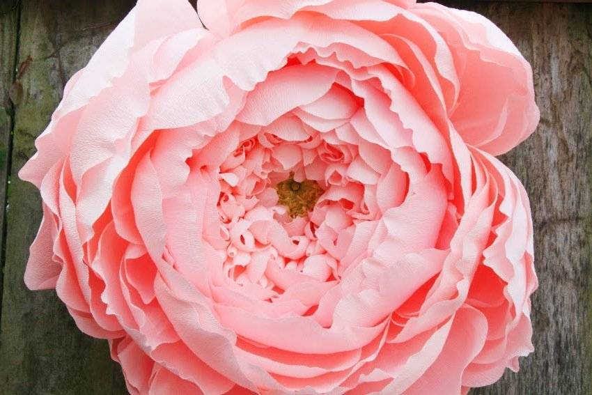Make great flowers from crepe paper