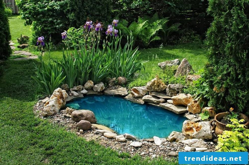 Create A Pond Directions Or How You Can Make Your Backyard Paradise Extra Lovely