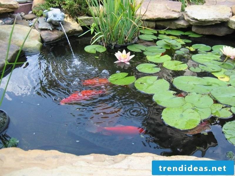 pond create guide garden pond create pond build garden pond ideas garden landscaping garden design