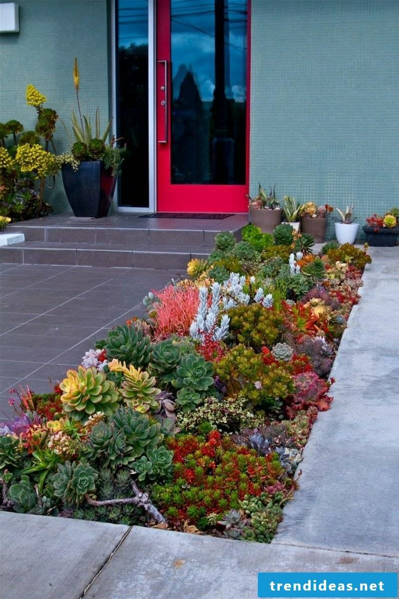 Front garden make plant diversity