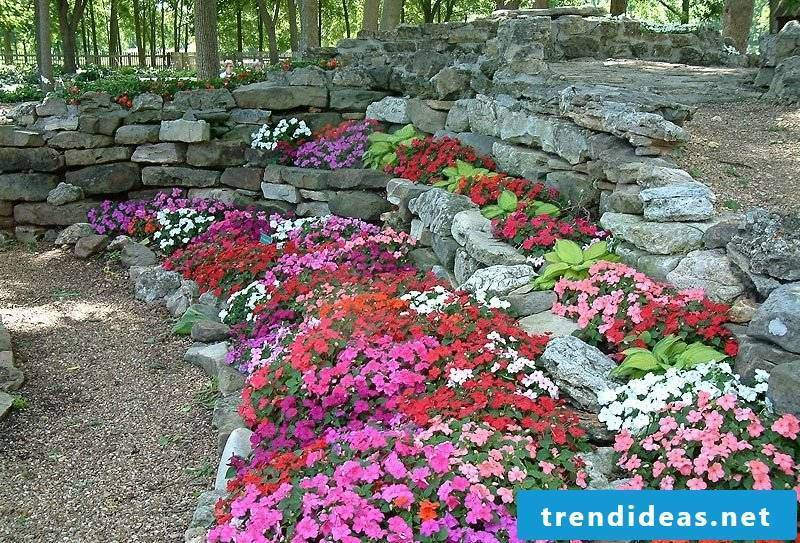 Lay flower bed with stones and plant