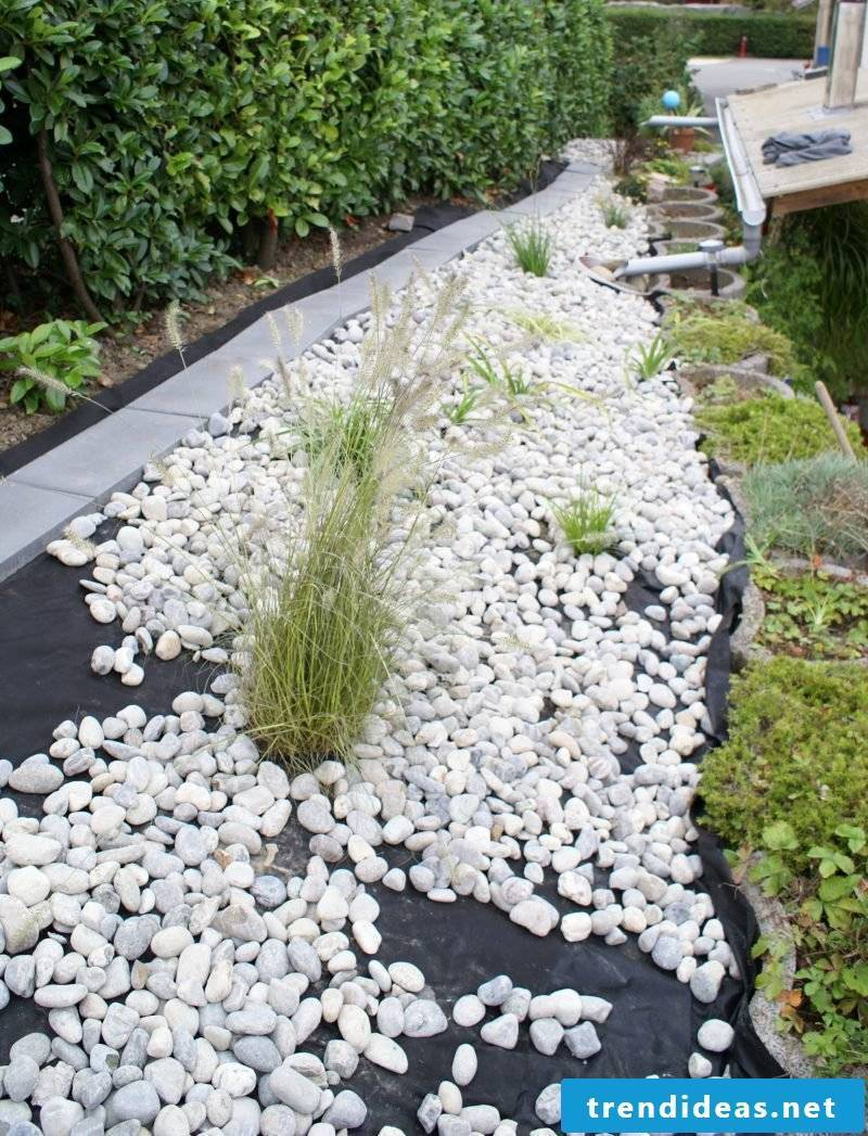 Creating a stone bed: The white stones emphasize the beautiful plants