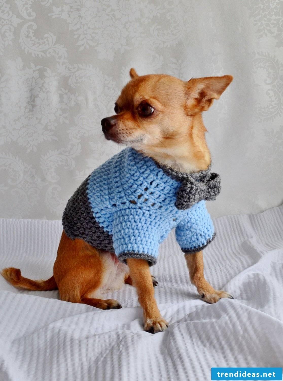 Dog sweater knitting instructions