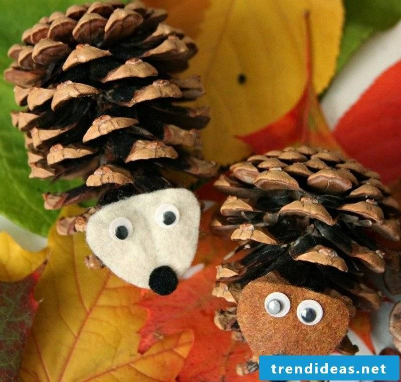 Tinker with pine cone hedgehog